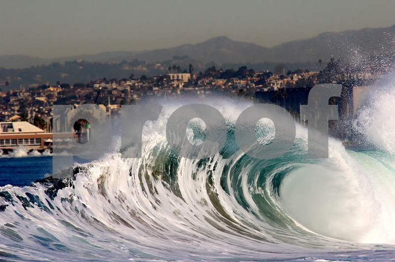 California Roll~