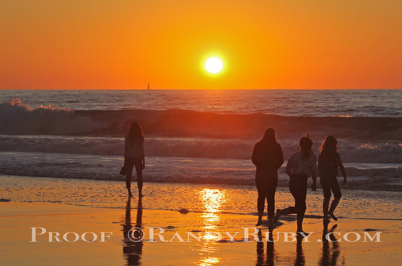 Family Sunset~