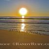 Sanderling Sunset~<br /> 2-28-13