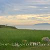 Happy Meadow~<br /> 1-6-11