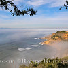 Cove Mist~