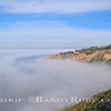 Cove Fog,Palos Verdes,Ca.