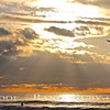 Surfing Spiritual Sunset.~  <br /> Taken: 12-29-12
