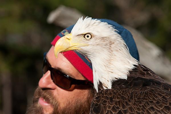 _DSC0218_eagle_person