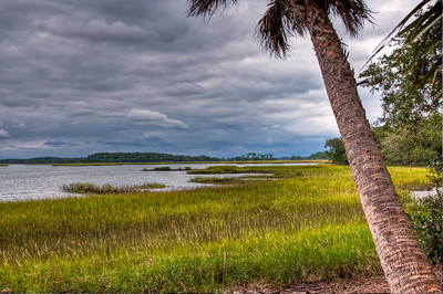 hilton-head-island-beach-grass