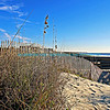 "Sand dune surrounded by pier, bright blue sky and ocean.<br /> <br /> bluemoon1236;  <a href=""http://www.bluemoon1236.smugmug.com"">http://www.bluemoon1236.smugmug.com</a> ,Bluemoon Fine Photography"