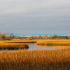 Marsh At Shem Creek