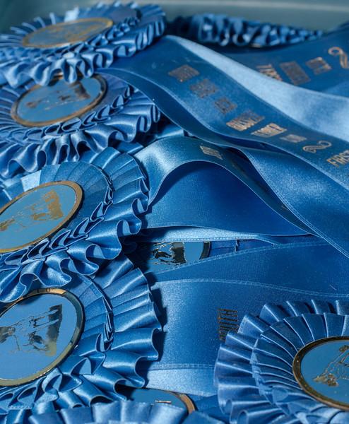 SCJRT_Racing_Misc_Sat_2012-7343