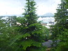 Scenic_Alaska_2014_0155