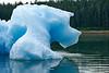 Scenic_Sony_2018_Alaska_0061