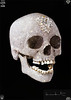 "Damien Hirst's diamond encrusted skull, <i>for the Love of God</i>, could be seen separately from the main exhibition - free. It <u>is</u> exquisitely beautiful. See his own <a href=""http://www.damienhirst.com/for-the-love-of-god"" target=""_blank"">website</a>, where there is also a link to a video of the skull rotating and glittering"