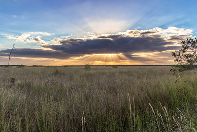Everglades sunset 2
