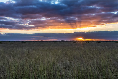 Everglades sunset 3
