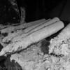Heian Maru, torpedos in hold E
