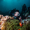 Anemone fish and John, Anilao