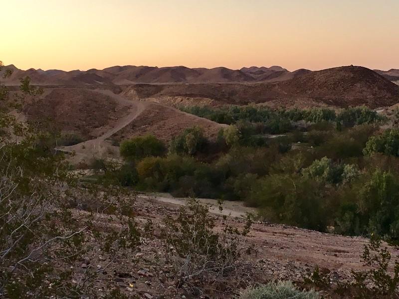 Sonoran Desert, CA
