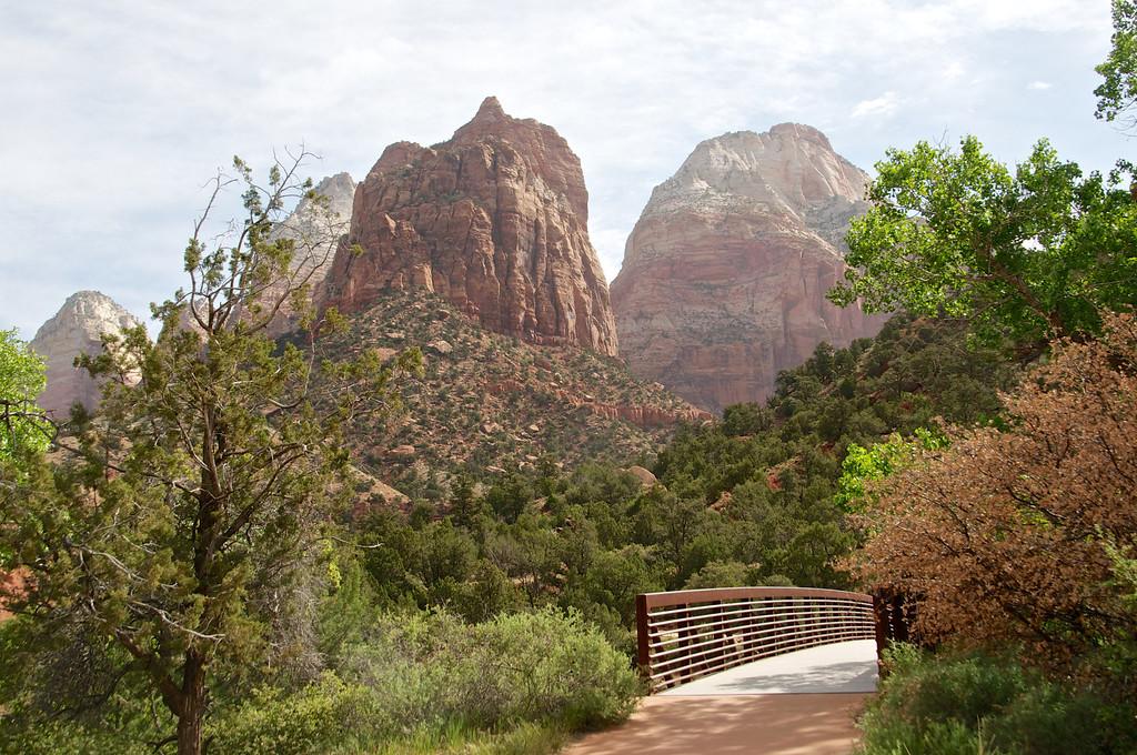 Bridge along the Path, Zion, NP