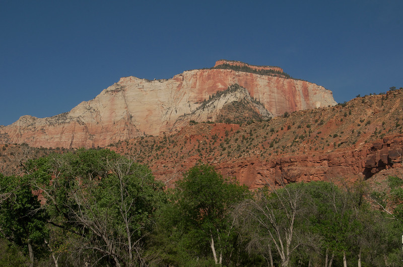 Magnificent View, Zion, NP