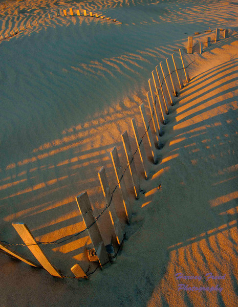 Southhamption Beach 02
