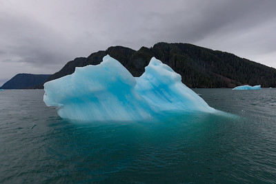 Icebergs here are smaller than in the polar regions, but the LeConte glacier produces quite a few nonetheless
