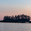 An early morning trip into the bay reveals many islands covered with trees in the dramatic sunrise