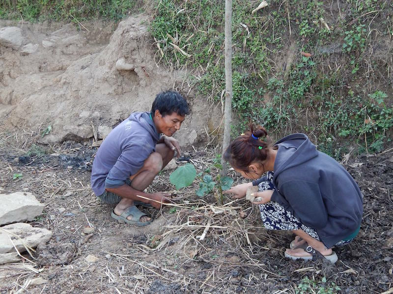 Nepali villagers planting a seedling as part of an Aythos project