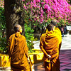 Doi Suthep monks