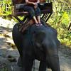 My elephant - Mae