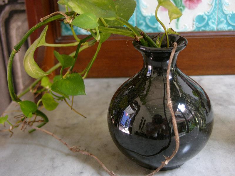 reflection of Cheong Fatt Tze Mansion on a pot