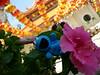 Cookie Monster + hibiscus, Kek Lok Si Temple