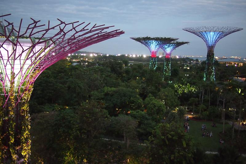 Singapore201601-068