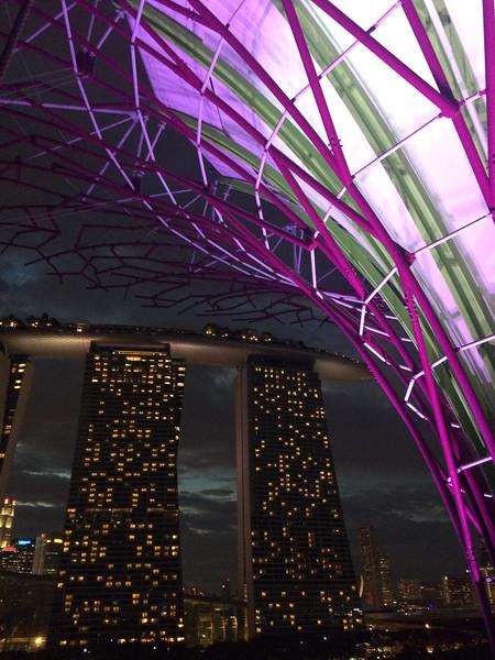 Singapore201601-071