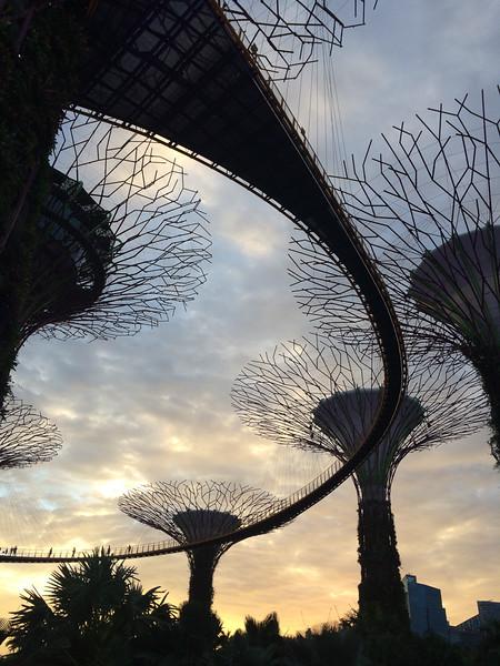 Singapore201601-066