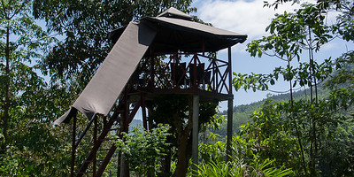 Treetop viewing platform at the guesthouse in Sinharaje