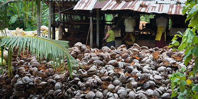 At the local coconut rope factory