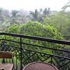 Rainy view from my balcony