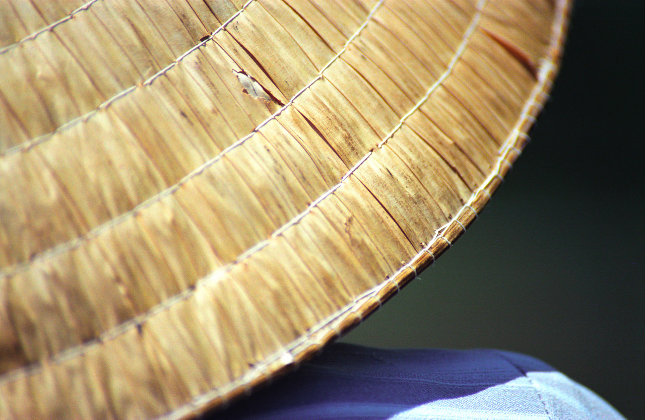 Vietnamese Conical Hat