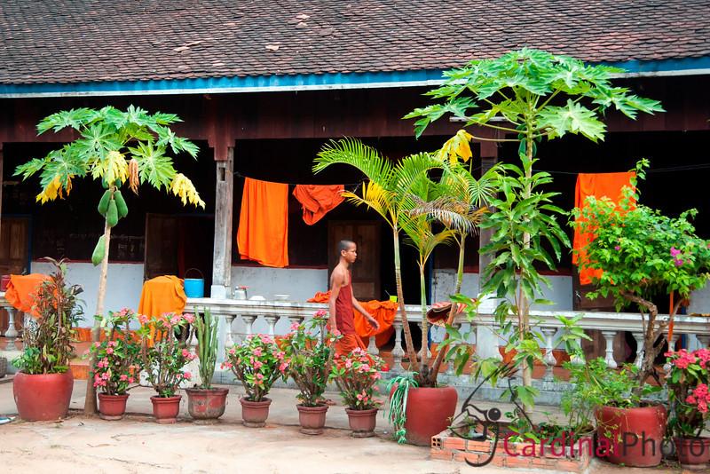 Bakong, Beng Mealea, Khmer EDL, Rolous Complex, Siem Reap, Cambodia