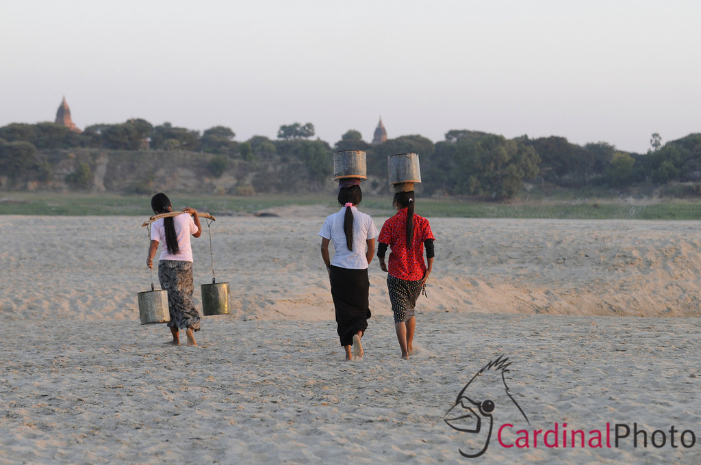 Women walking with buckets of water on their heads to bring it back t their village because they have no running water locally. Near Bagan, Plain of Temples, Myanmar (Burma), Asia