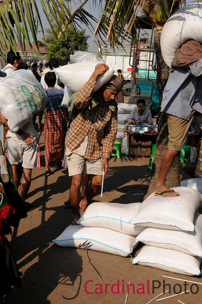 Men unloading Rice Sacks by hand from a freighter in Yangon Loading Docks, and dropping a stick to hel pthe count. Longshoreman make about five dollars per day doing this heavy labor in  Myanmar, Burma, Southeast Asia