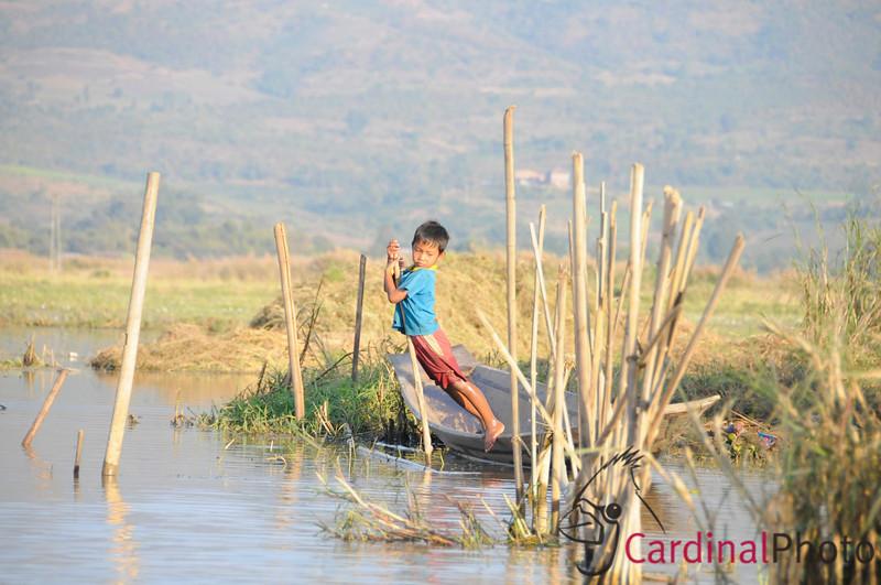Inle Lake Area, Shan State, Myanmar (Burma), Southeast Asia 1/ 1000s, at f/6.7 || E.Comp:0 || 150mm || WB: AUTO 0. || ISO: 800 || Tone:  || Sharp:  || Camera: NIKON D300on: 2009:01:13 16:29:29