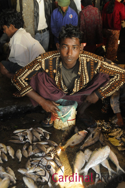Fishmonger at the local morning market in Sittwe, a poor port city near Bangladesh, Rakhine Kingdom, Myanmar, Burma, Southeast Asia