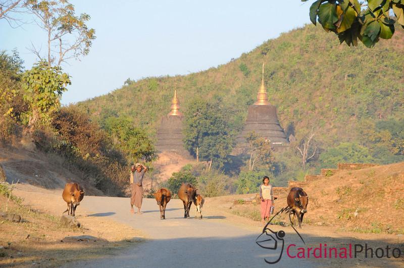 Street scene on typical dirt road in Western Burma among the many temples found near Mrauk U. North of Sittwe at Mrauk U, Rakhine Division, Arakhan Kingdom, Myanmar, Burma, Southeast Asia