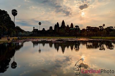 Cambodia January 2013