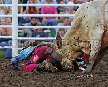 NFPB Bull Riding & Bull Fighting 2013_0813-050a