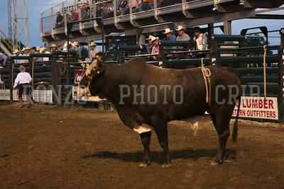 PRCA BULL RIDING 1 2012-0814-034
