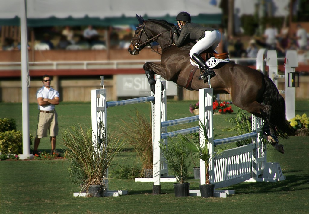 National Horse Show; Wellington; Florida; USA