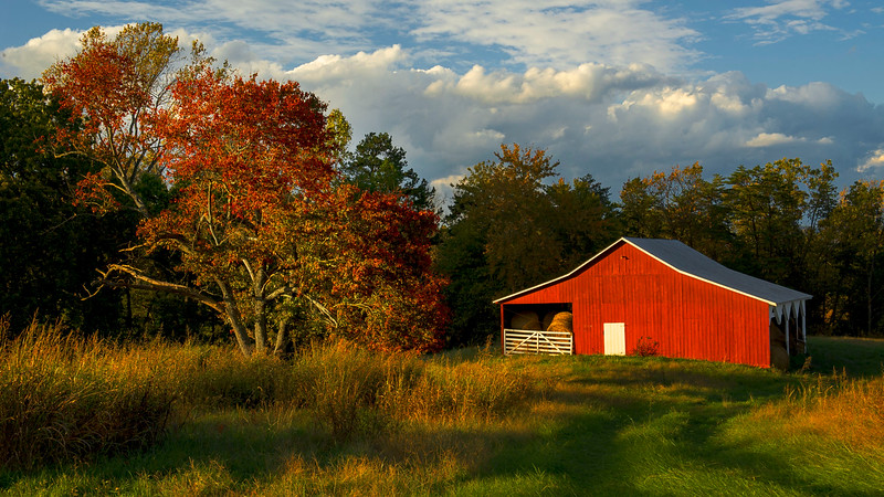 Red Barn in Autumn; Albemarle County; Vitginia; USA