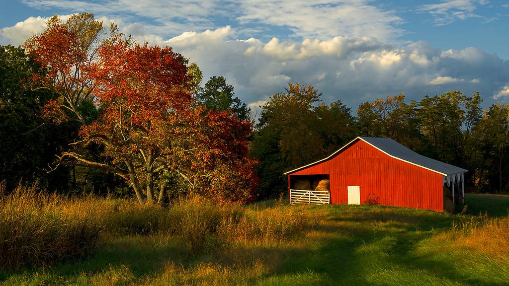 Red Barn in Autumn; Albemarle County; Vitginia; USA