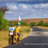 Three young herders walking with a Malagasy flag to the nearest town to announce the missing of one of their zebu cows and asking for help to look out for it, near Beando, Madagascar